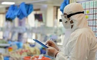 ۷۱ بیمار جدید کووید- ۱۹ در البرز بستری شدند