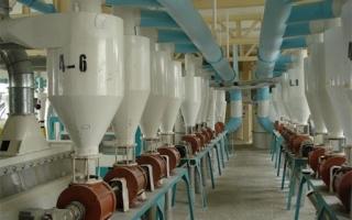 فعالیت 23 کارخانه آرد در البرز