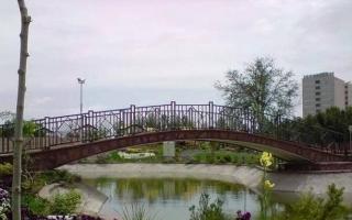 پارک هامون از ته سیگارهای رهاشده پاکسازی شد